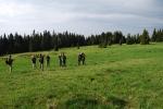 Meadows at Poľana hotel
