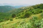 Vitachevo plateau
