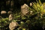 Jewish cemetery, Třebíč