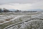 Winter is sometimes seen in winter :-)