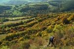 Carpathian vista