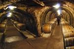 Tokaj wine cellars
