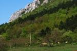 Zádiel gorge, Slovak Karst